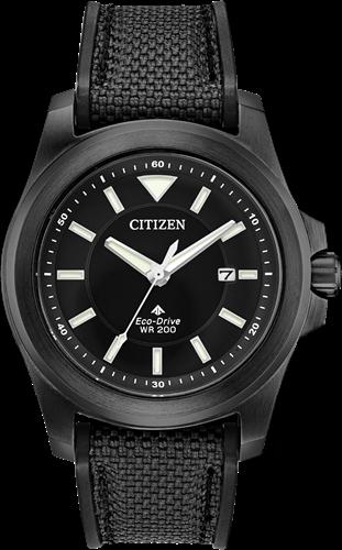 Citizen Promaster BN0217-02E Land